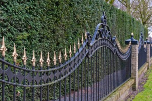 Black-Gold-ornamental-spiked-metal-fencing
